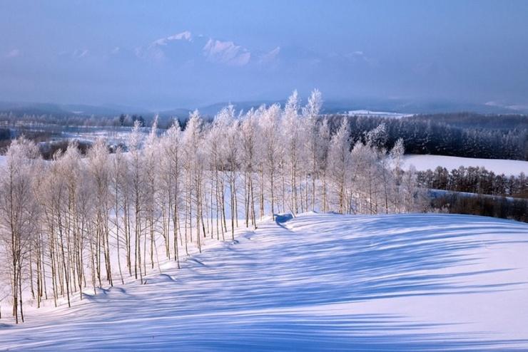 2、冬天及四季末出生的人。因为水命人属寒命,水亦带寒,如果水命人再住在向海(江、河)的楼房,会寒气过