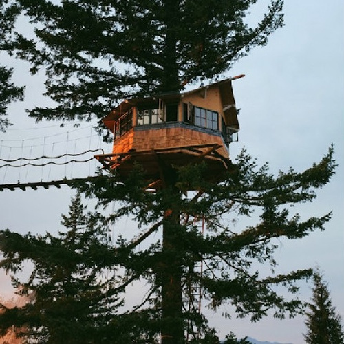知名品牌设计师花百万建树屋 只为追求理想生活(图)