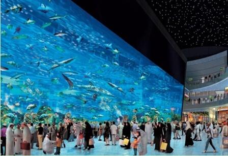 壁纸 海底 海底世界 海洋馆 水族馆 448_307