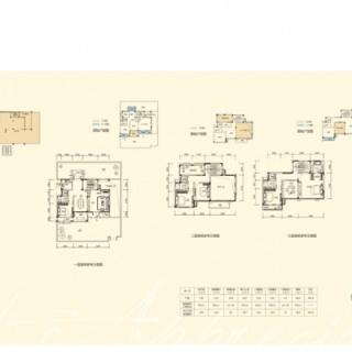 286平双拼别墅户型6房