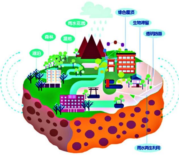 让城市之水收放自如 青岛加快建设海绵城市