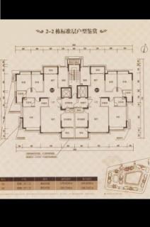 2-2栋标准平层图