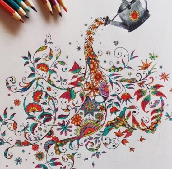 彩铅精品绘画课程,手绘植物