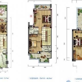别墅户型图D1