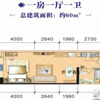 4#、8#1室1厅60㎡户型
