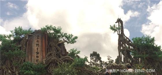 """云南野生动物园将是云南""""动物王国""""的缩影"""