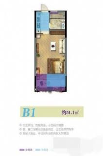 5#B1户型