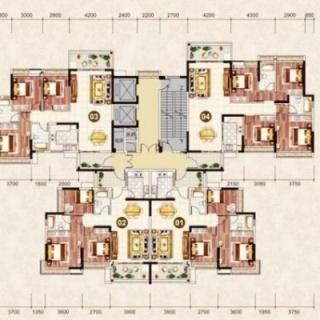 3栋1梯楼层平面图
