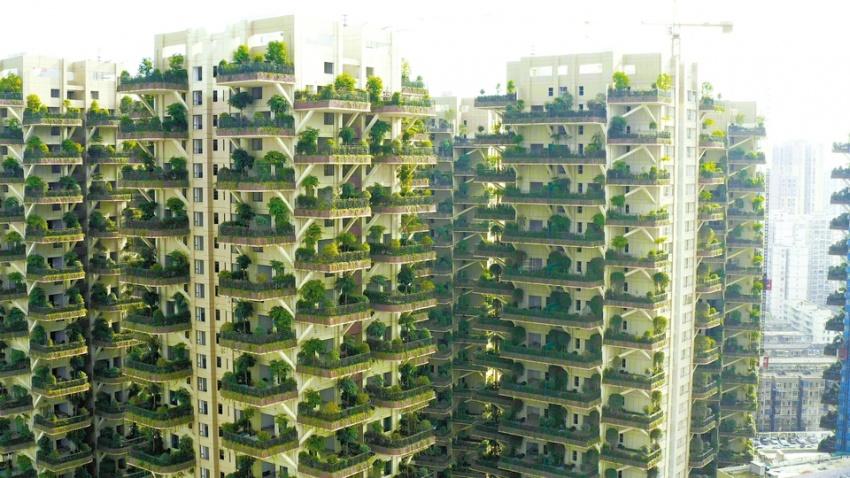 """""""垂直森林""""示范点亮相成都新都区"""